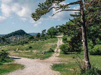 Where to Ride from Nice – Getting High on the Bonette