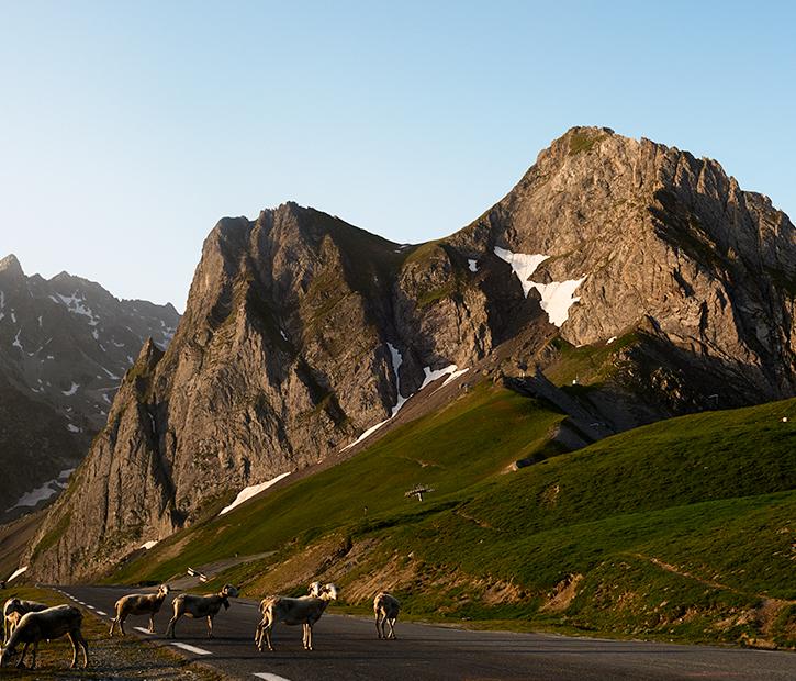Where we ride – Global Climbs