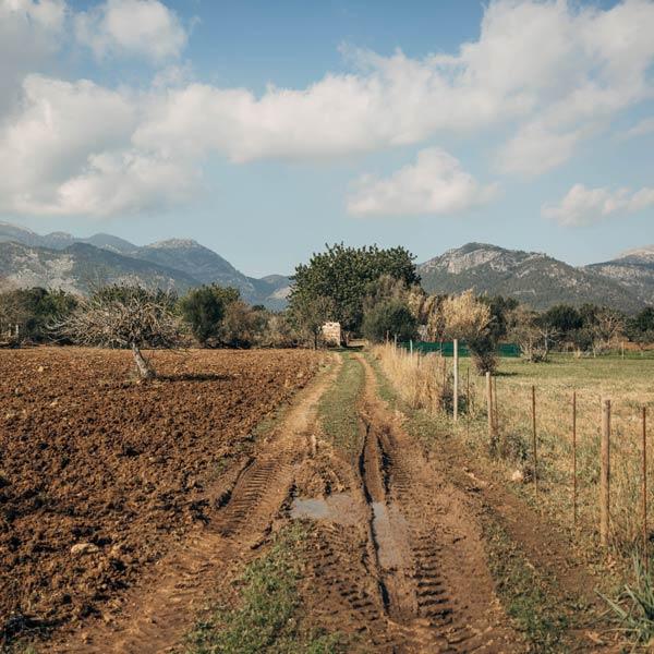 GRAVEL RIDES ON MALLORCA – ON THE INCA TRAIL