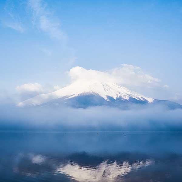 Fuji On Film